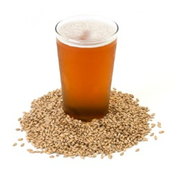 Global Brewing Enzymes Market