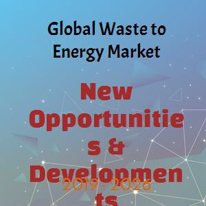 Global Waste to Energy (WTE) Market Growth Ratio Analysis