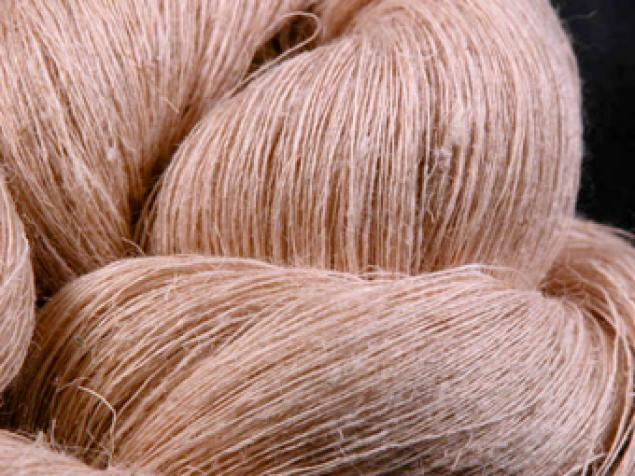 Global Eco Fibers Market
