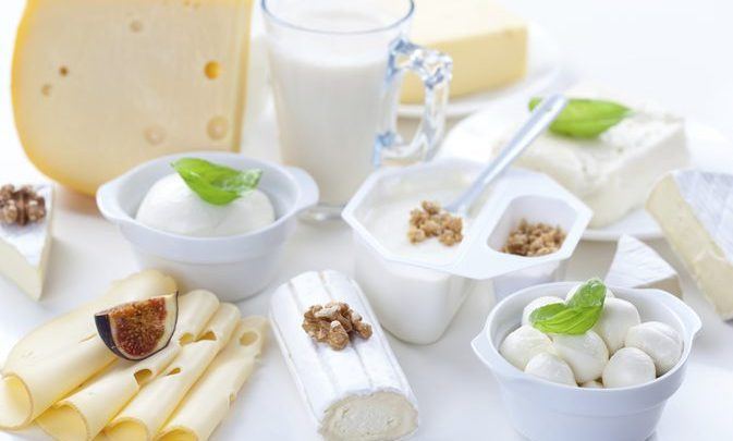 Global Fat Rich Dairy Products Market