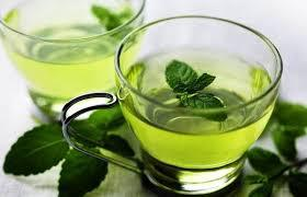 Global Green Tea Essential Oil Extract Market