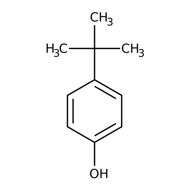 Global Para Tertiary Butyl Phenol 99 Market